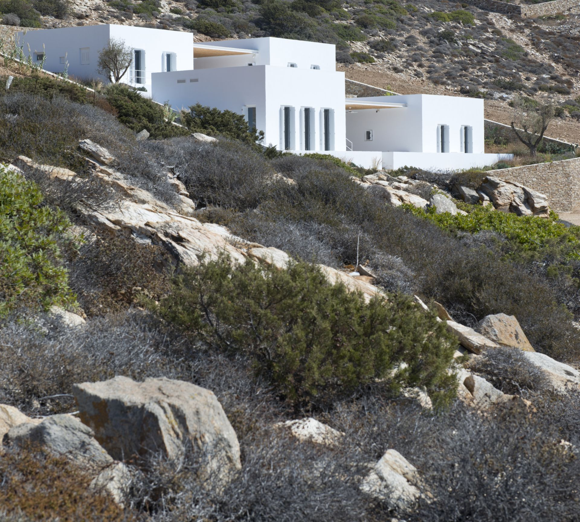 OLIAROS presents: APS House by ARP